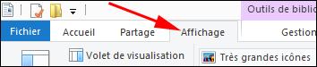 Windows 8 explorateur fichiers menu options Affichage