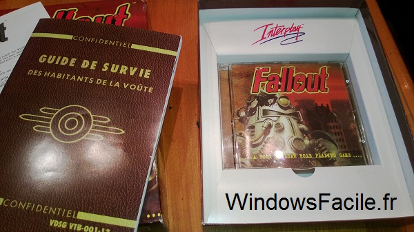 Fallout Dos - Windows 8