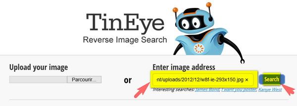 recherche image url tineye