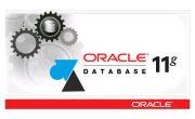 Oracle 11g : fermer une session ouverte sur une base