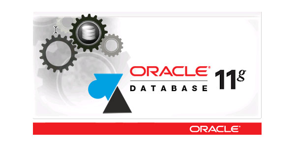 tutoriel serveur Oracle 11g 11