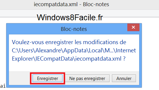 IE10 compatibilité site flash enregistrement