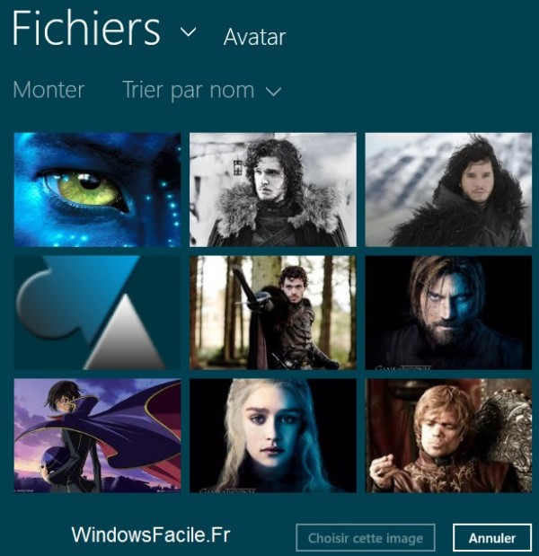 Choix avatar Windows 8