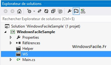 Visual Studio fichier exclu