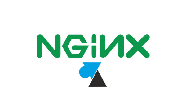nginx logo serveur web