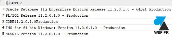 version Oracle 11g R2 11.2