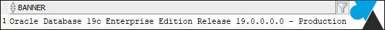 version oracle 19c 19 database